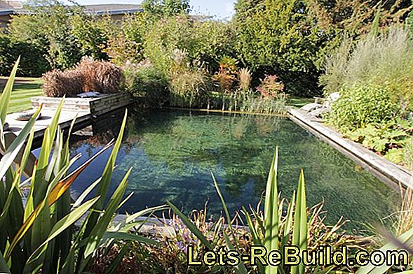 Build your own pool: garden pool and swimming pond