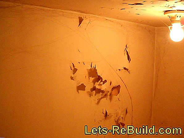 Interior plaster with voids - How to repair plaster defects