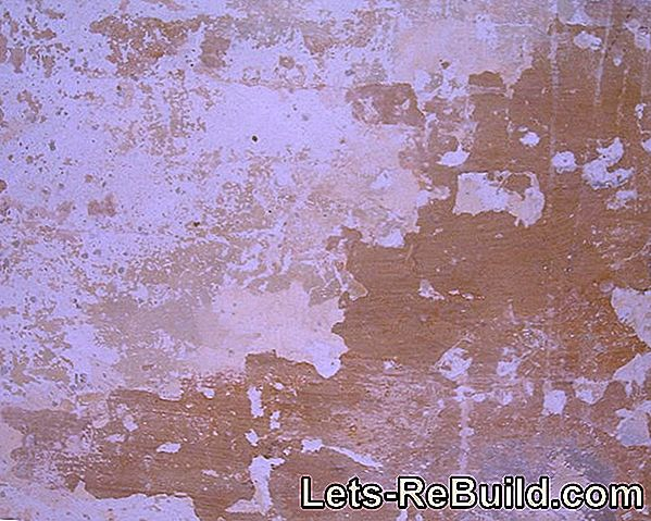 Remove latex paint on wallpaper cleanly from the wall