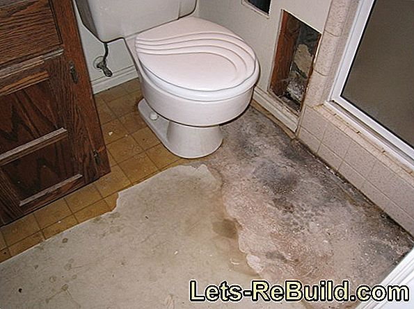 Linoleum in the bathroom: is that possible?