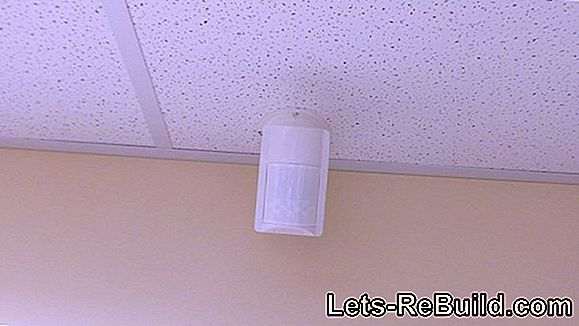 Motion Detector » How To Install It Cat Safe