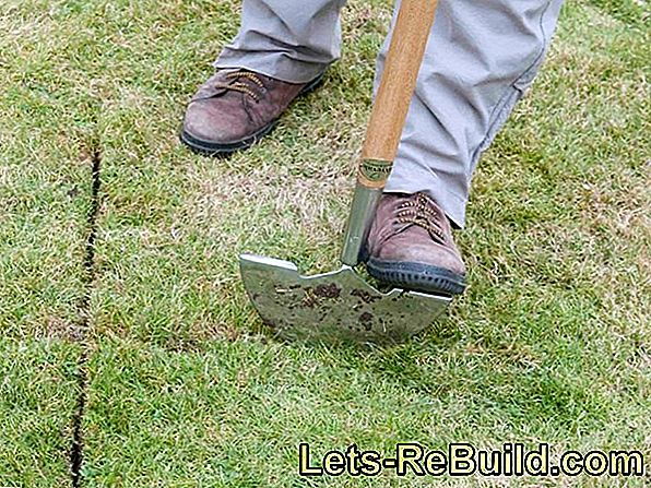 Turfing: The new trend in front gardens?