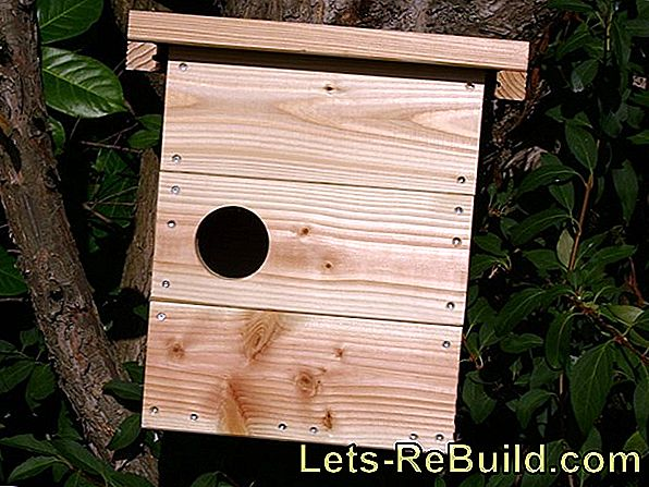 Build nesting box for squirrels (Kobel) yourself