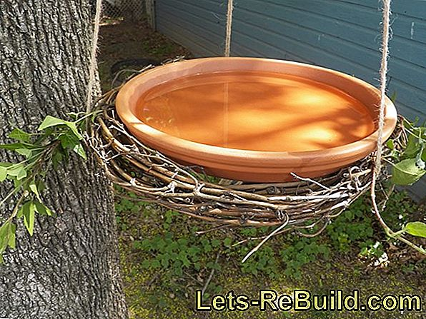 Build birdbath and birdbath yourself
