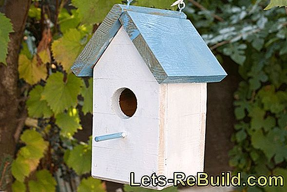 Building Instructions For Birdhouses