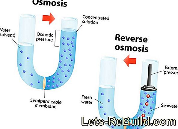 Reverse Osmosis Membrane » Structure & Permeability