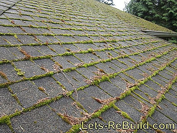 Moss Remover for the roof - what's here?