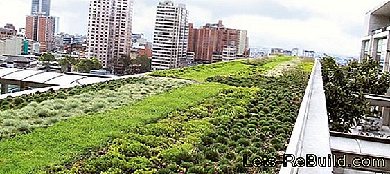 Green roof drainage
