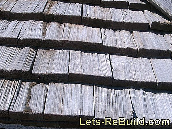 Shingle Roof » Guides & What To Avoid