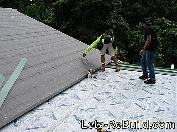 Minimum Wage For Roofers » How Tall Is He?