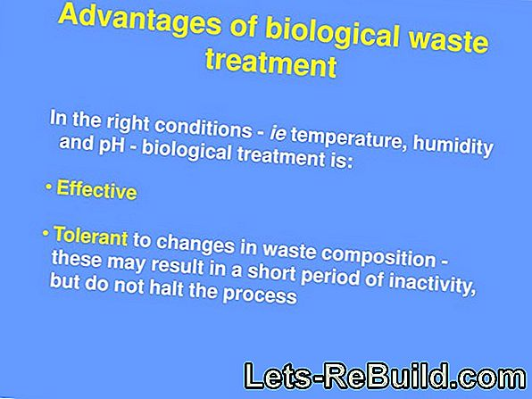Biological Wastewater Treatment » All Information At A Glance