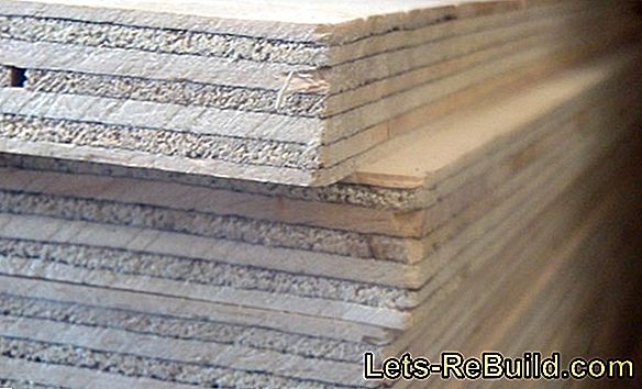Spruce Wood » Features, Uses And Prices