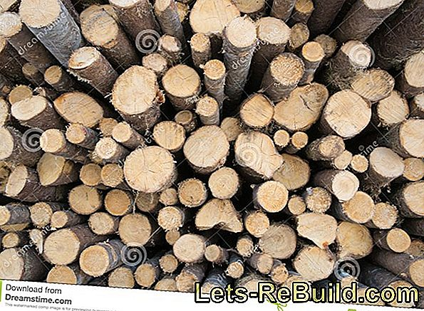 Spruce Wood For Outdoors » How To Protect It From Moisture