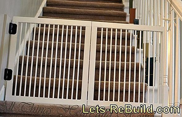 Stair gate and cats