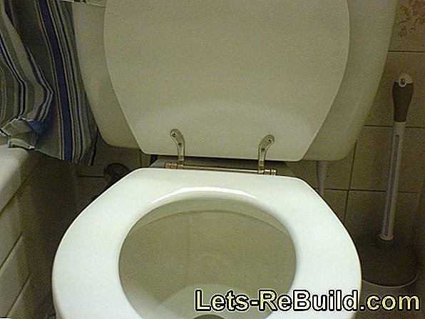 Mounting The Toilet Seat » Step By Step To A Firm Hold