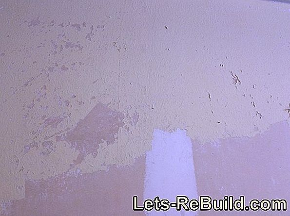 Wall Paint Against Mold » These Colors, On The Other Hand, Prevent It