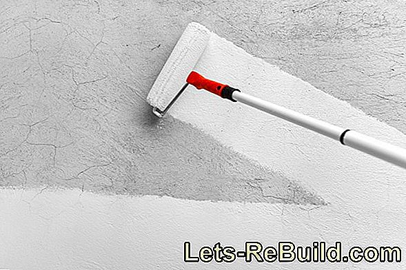 This is the perfect primer for your wall paint!