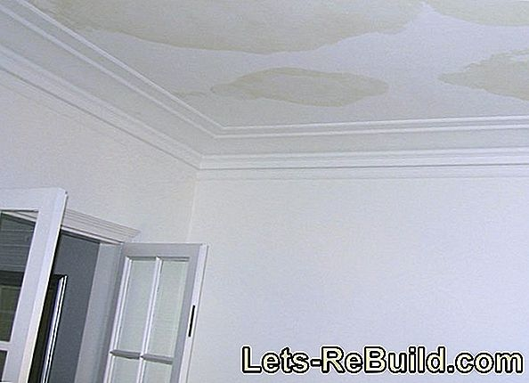 Fix Water Damage » During The Development