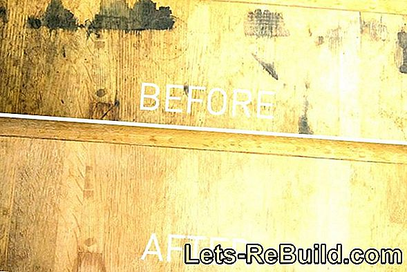 Wooden Furniture Mold » How To Remove Mold