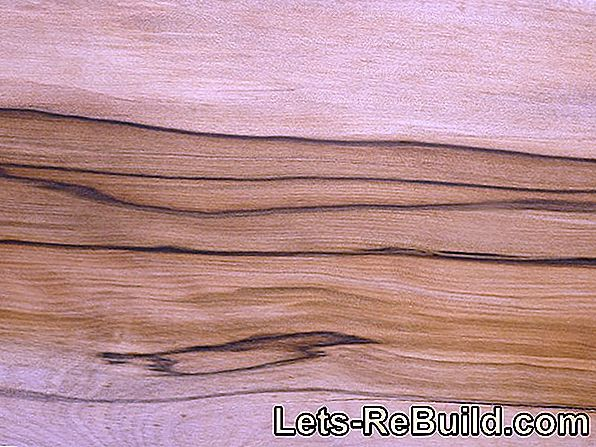 Rosewood » Properties, Use And Origin