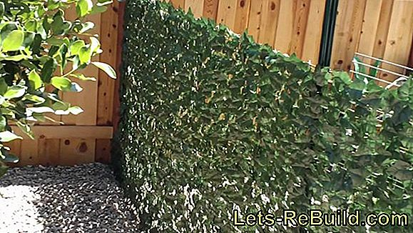 Remove green cover from the wooden fence
