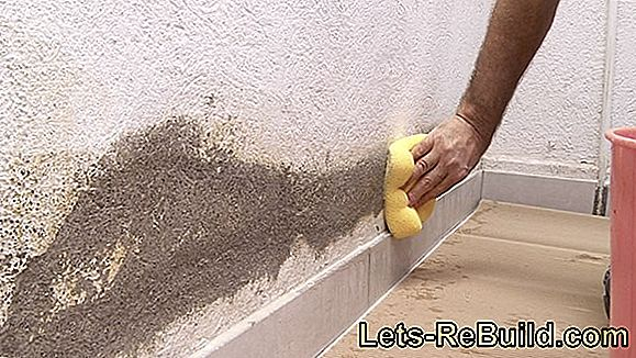Pintura De Pared Impermeable » Estas Opciones Son Tuyas