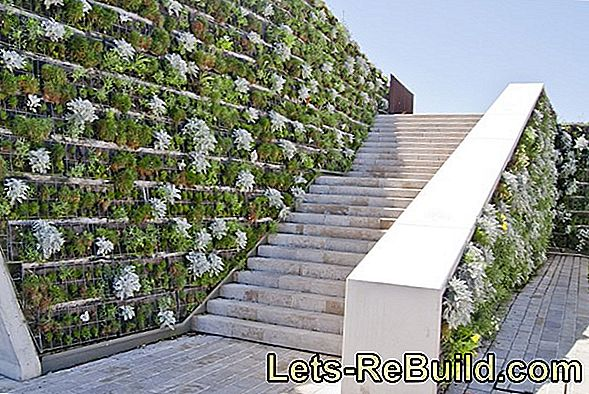 Greening The Garden Wall » Ecco Come È Fatto