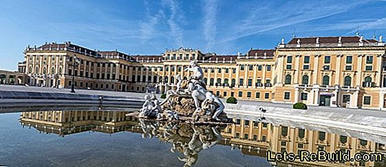Dringend: Home Improvement Voor Sochi Gezocht!