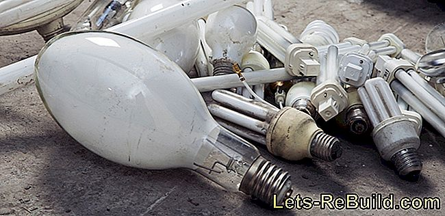 Dispose Of The Light Bulb In The Trash » May This Be?