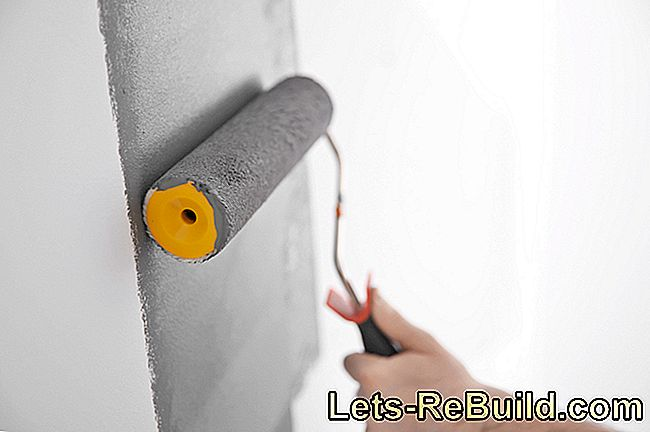 Painting Lime Plaster » Which Color Is The Right One?