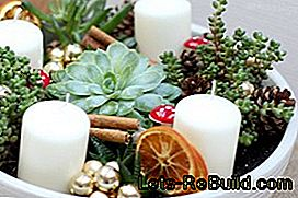 Son dakikada DIY Advent çelenk: çelengi