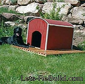 Build kennel yourself: yourself