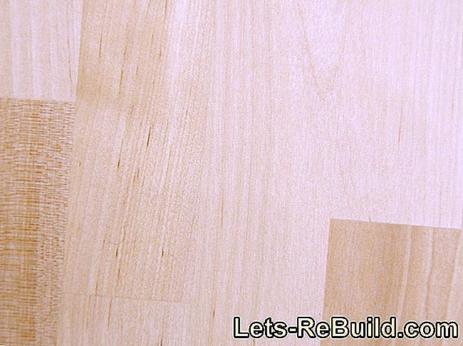 Buying guide for beech parquet